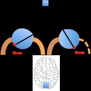 desviacion secundaria 2